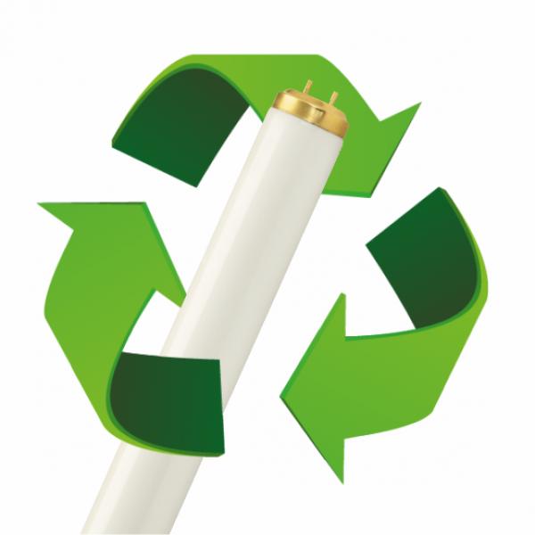 Waste Management Fee